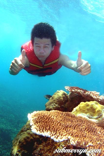 Open Sea Snorkel