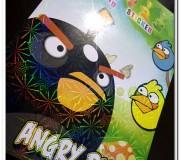 Angry Bird activity book