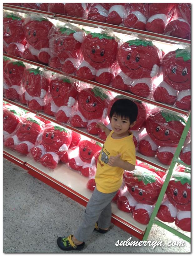 Strawberry Park Genting_10