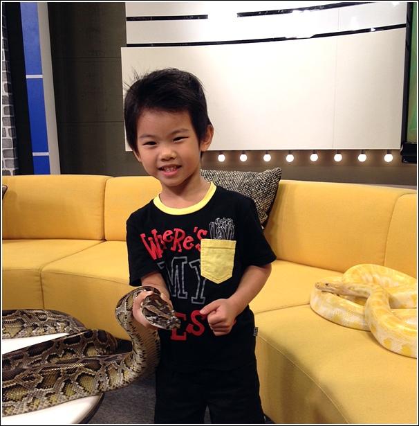 MHI TV3