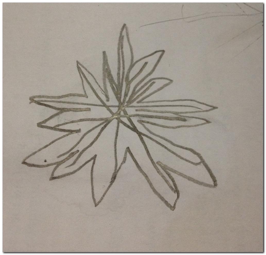 How to draw Malaysia Flag star_4