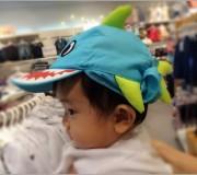Shark_4