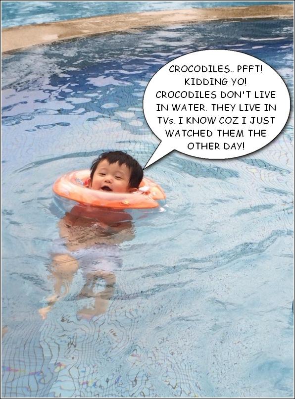 crocodiles live in water
