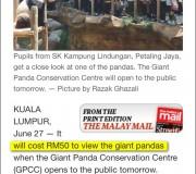 malaysia panda in zoo negara