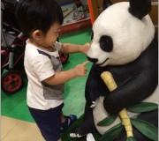 Hamleys Panda