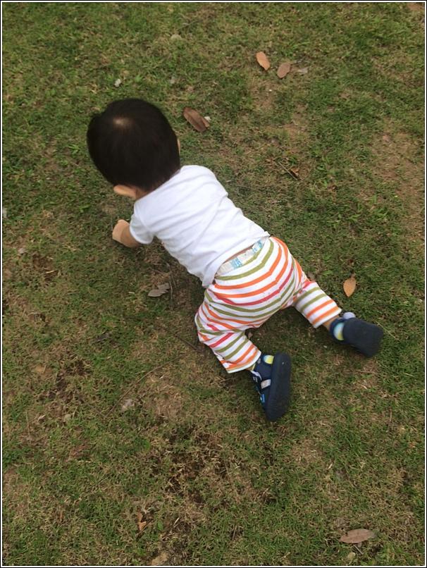 Ayden playground