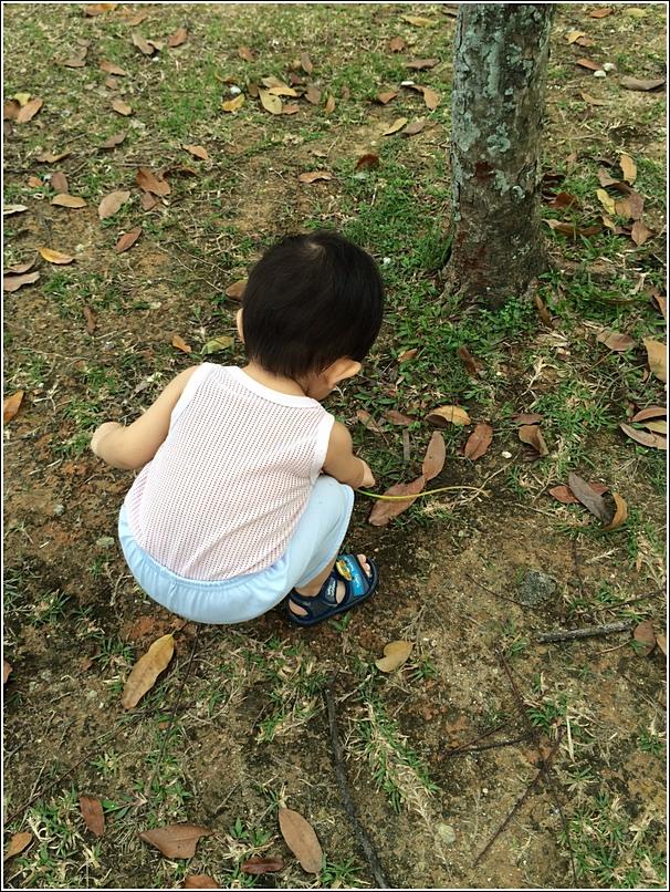 outdoor learning activities for children 1