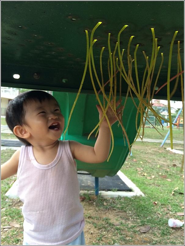 outdoor learning activities for children 4