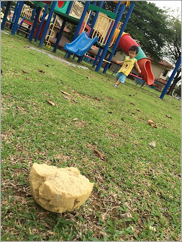 playground fun 1