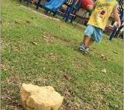 playground fun 3