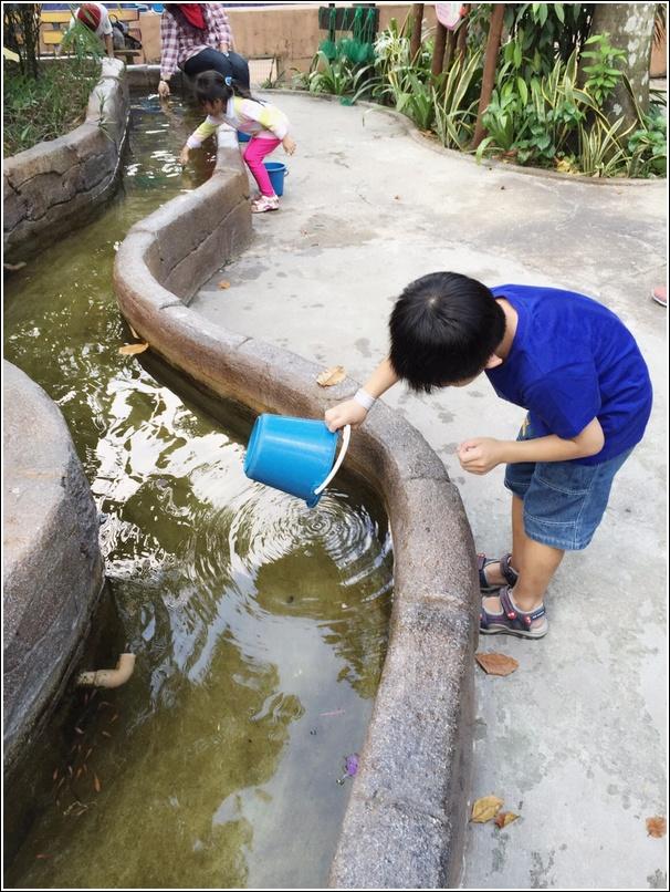 Sunway Lagoon Pet Village Fish 2