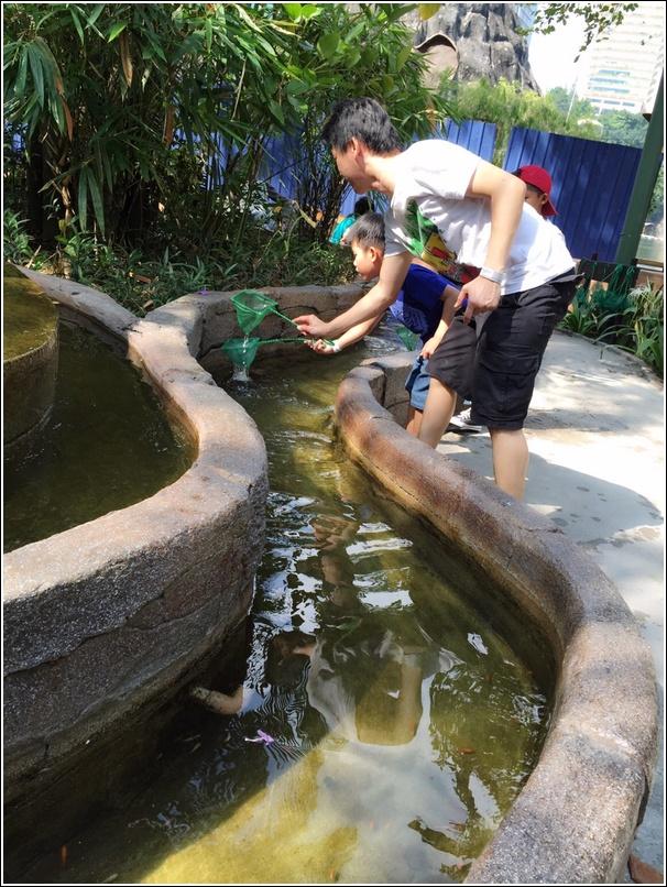 Sunway Lagoon Pet Village Fish