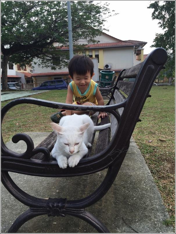 Ayden and playground cat