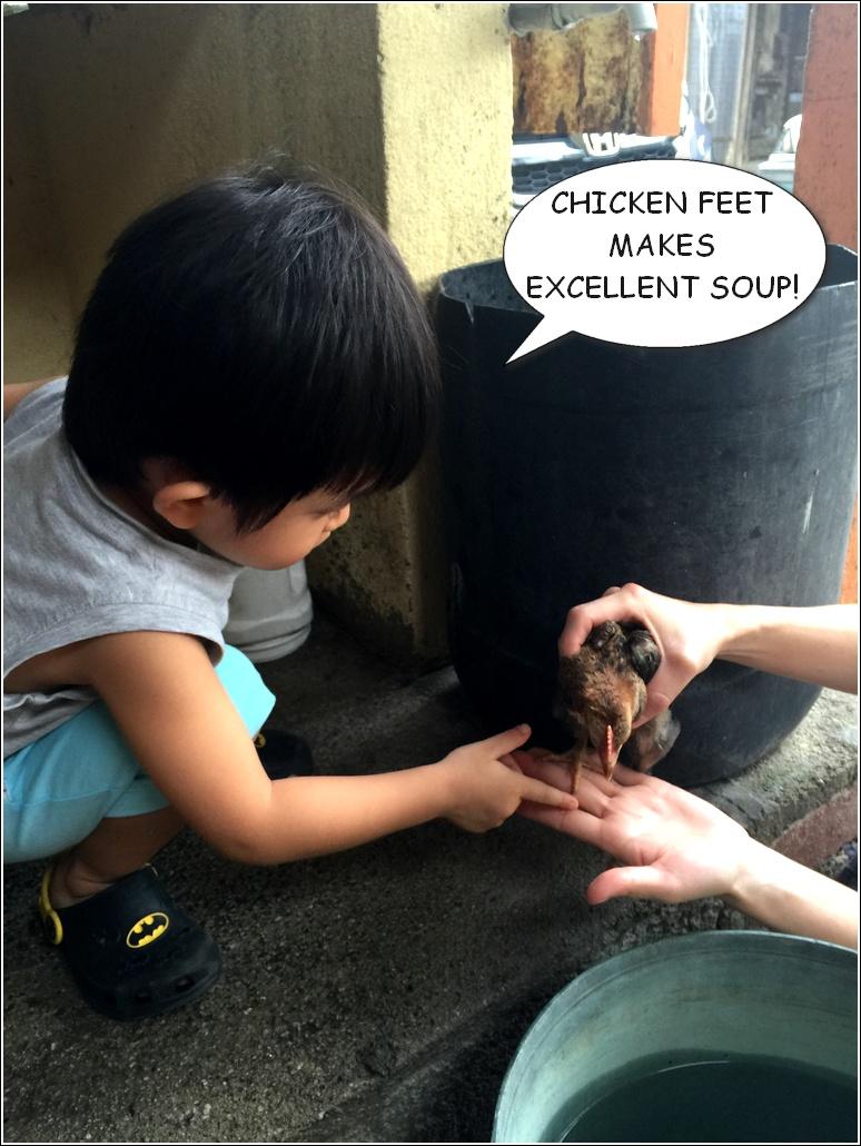 Comic Ayam 3