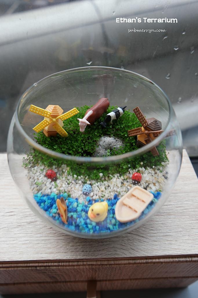 Ethan terrarium