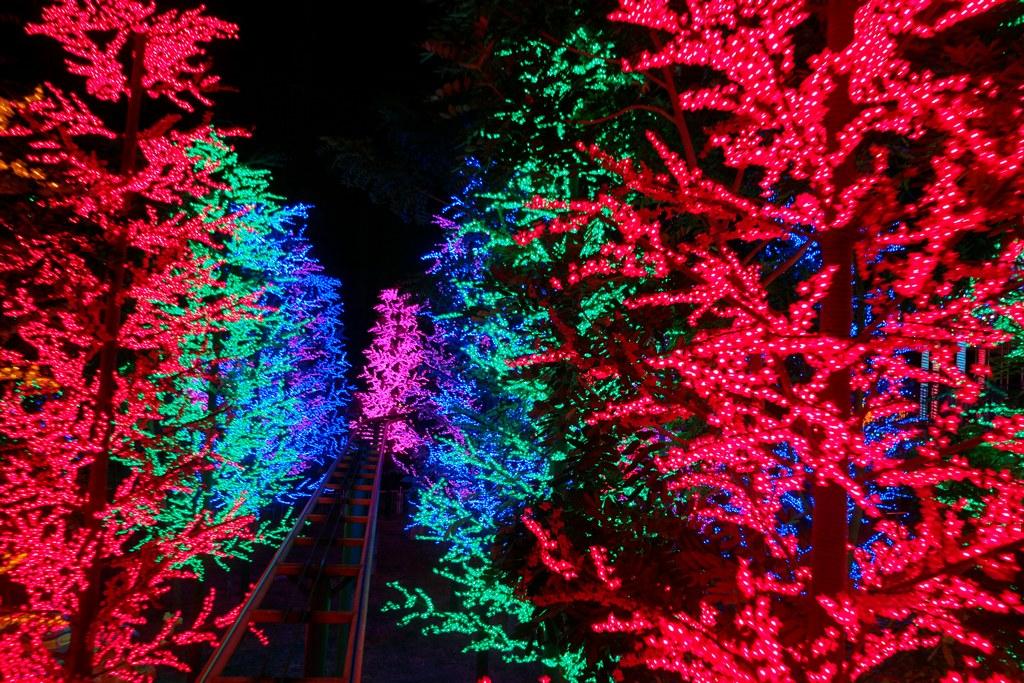 city-of-digital-lights-theme-park-14